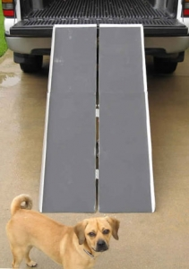 Car, Vehicle Wheelchair Ramp